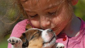 стишки про Дашу и щенка
