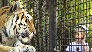 стихи про Владу и зоопарк