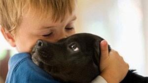 стихи про мальчика Влада и собаку